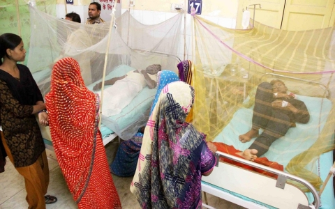 Patients suffering from malaria and dengue fever being treated in an emergency ward at a city hospital.