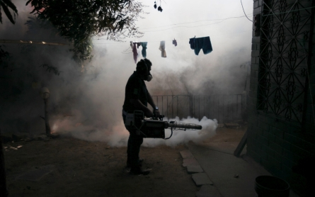 Zika virus set to spread across Americas, spurring vaccine hunt