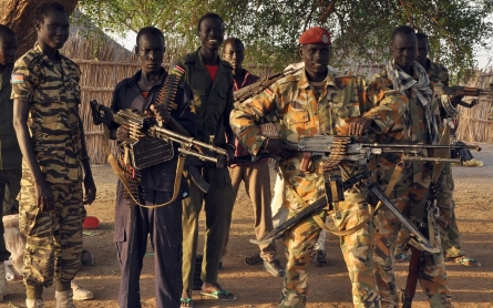 UN panel recommends arms embargo, sanctions on South Sudan