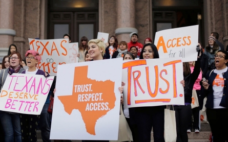Democrats urge Supreme Court to overturn Texas abortion law