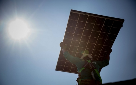 North Carolina coalition presses schools to go solar