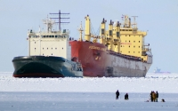 NGOs sound alarm on heavy fuel oil used in Arctic       shipping