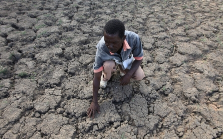 Drought-stricken Zimbabwe declares state of disaster