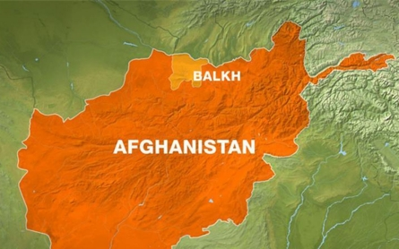 Three Afghan soldiers killed in suicide bombing