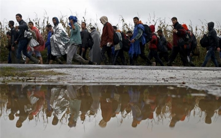 Slovenia to deploy army to stem refugee flow