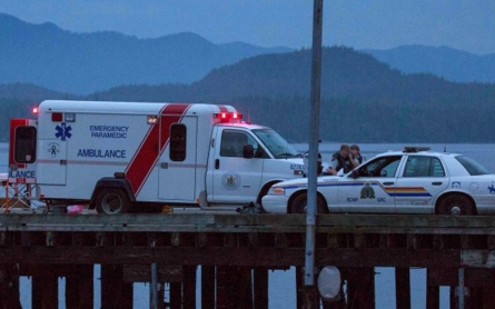 Whale-watching boat sinks off Canada