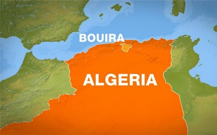 Algerian forces kill '21 ISIL-linked fighters'