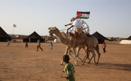 Western Sahara's struggle for freedom cut off by a wall