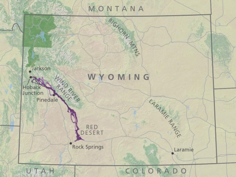 Migration route of the mule deer