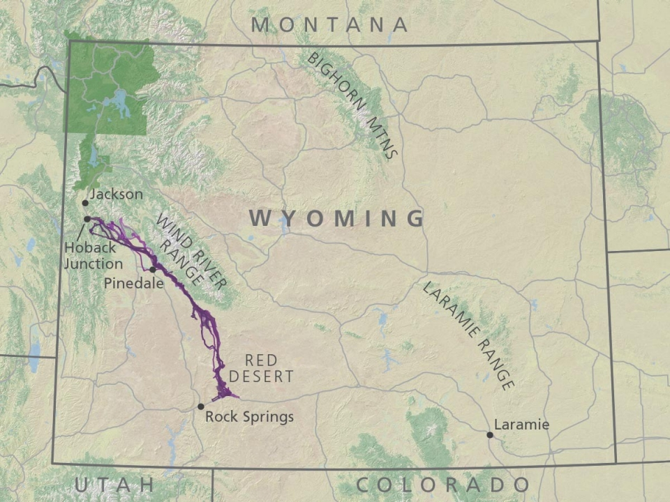 Revealed Biologists Discover Longest Mammal Migration In Lower - Mountain ranges in wyoming