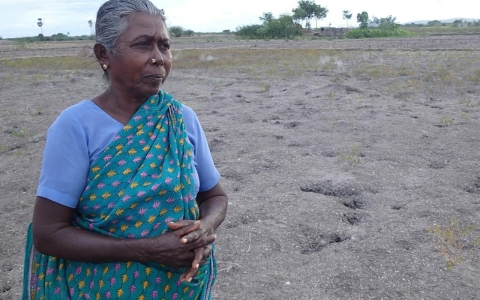 Kassiamal Karuppasamy in the Tamil Nadu Women's Collective farming plot in Erachi.