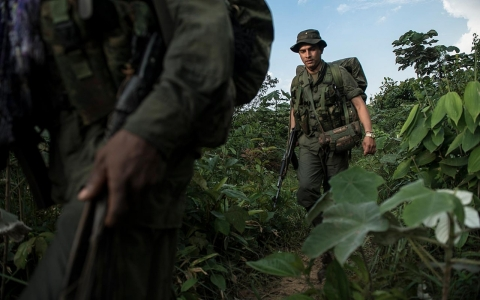 Thumbnail image for In the jungle, FARC rebels prepare for peace