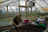 Ex-Marine Shaun Valdivia plants seeds for starts in one of the farm's greenhouses. A second greenhouse is almost complete.