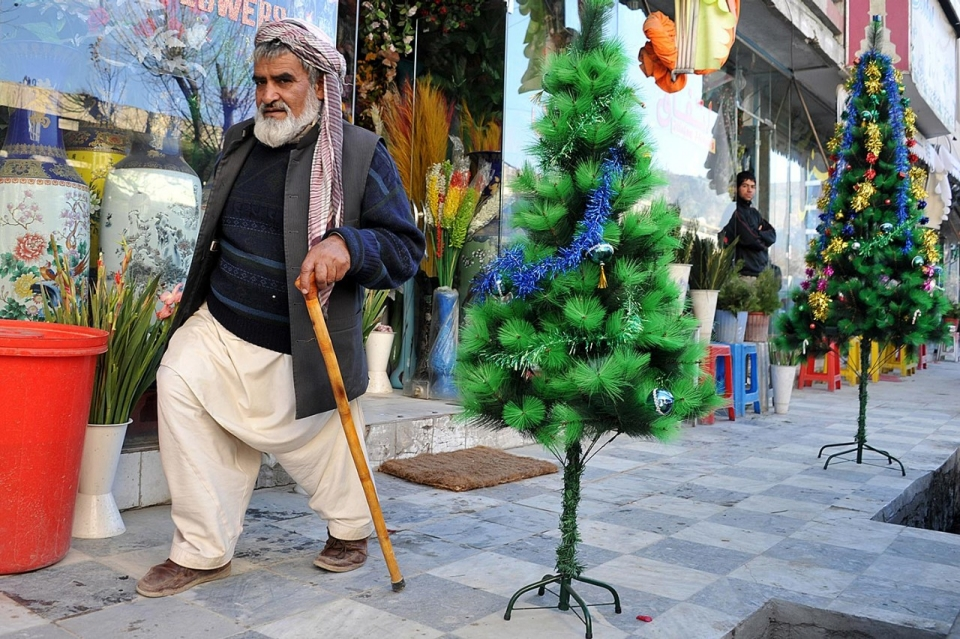 kabul afghanistan a man walks past christmas trees on sale most of them intended for foreigners living in the afghan capital noorullah shirzadaafpgetty - American Sales Christmas Trees