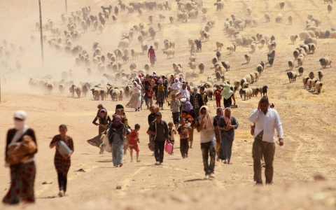 Thumbnail image for Photos: Yazidis flee fighting in northern Iraq