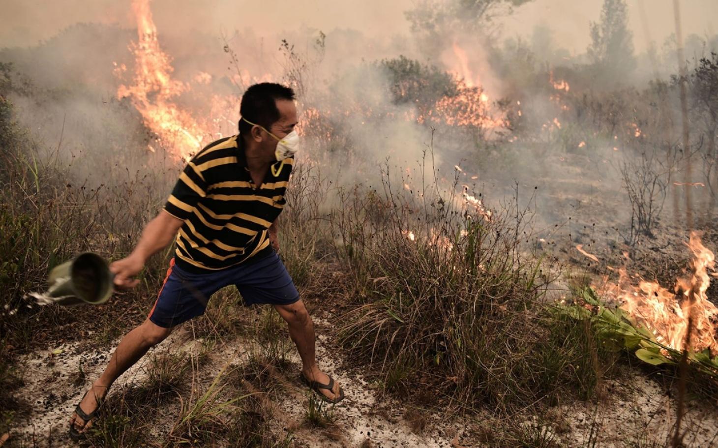 Blame Western Companies Southeast Asia's Haze | Al Jazeera