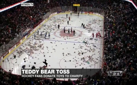 Annual 'Teddy Bear Toss' helps dozens of charities