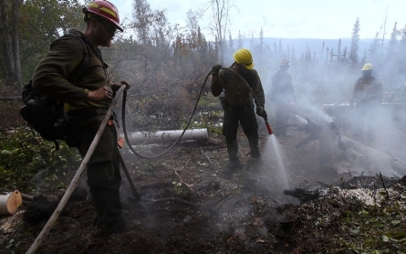 Alaska's wildfires create disastrous loop of climate change