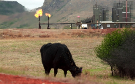 Tribal environmental director: 'We are not equipped' for N.D. oil boom