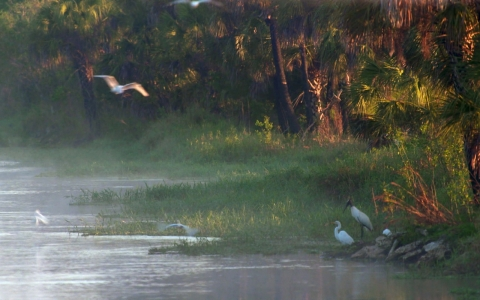 Thumbnail image for Everglades oil drilling plans raise contamination concerns