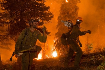 6 things you need to know about wildfires