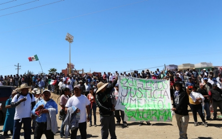 Timeline: Mexican farm workers demand living wage