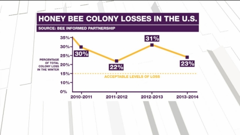 Honey bee colony losses in the U.S.