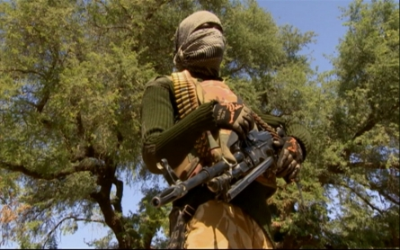 The offensive against Boko Haram