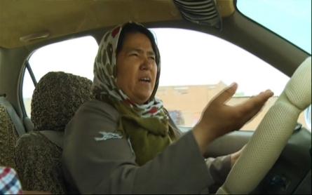 Taxi driver essay topics