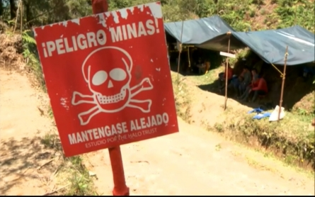 Mozambique declared free of landmines