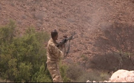 Somalia's Puntland calls for help in the fight against Al-Shabab