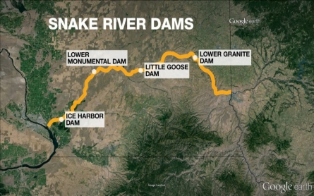 Activists in Washington want Snake River dams removed