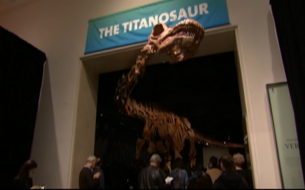 Titanosaur unveiled in New York City