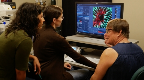TechKnow correspondent Marita Davison looking at coral specimen underneath the confocal microscope with Amy Eggers and Dr. Ruth Gates.
