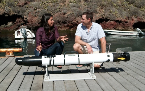 AUV on land.