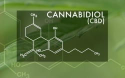 Need to know: The science behind medical marijuana