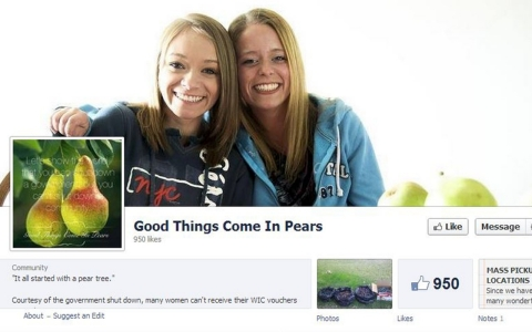 Screenshot of 'Good Things Come in Pears' Facebook page.