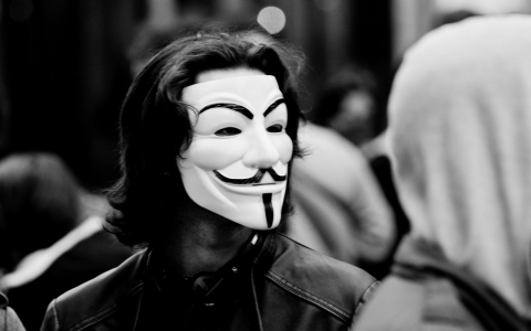 Protester dons Guy Fawkes mask.