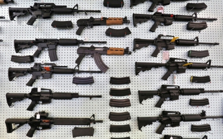 Are Democrats doing enough on gun control?
